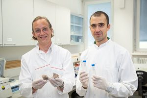 Bioarchäologe Jan Kemper Kiesslich und Rechtshistoriker Daniele Mattiangeli Credit Kolarik 300x200
